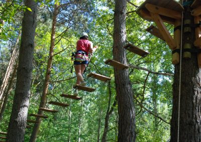 Bosc vertical
