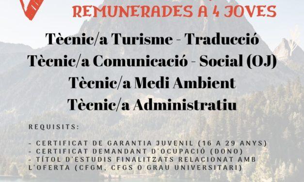 Pràctiques remunerades (Garantia Juvenil)