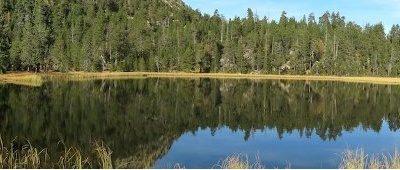 Projecte LIFE+ LimnoPirineus: Natura i conservació dels estanys i mulleres dels Pirineus