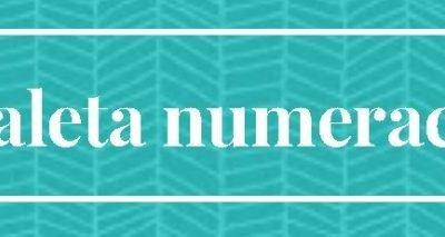 Maleta MathPallars de Numeració