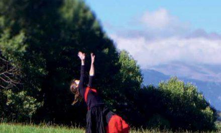 Prat, arbre i formiga (Anna Rubio)