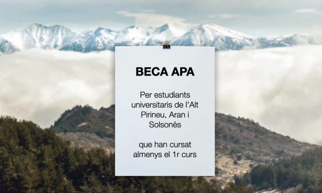 Beca APA 2020-2021